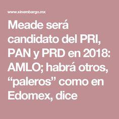 """Meade será candidato del PRI, PAN y PRD en 2018: AMLO; habrá otros, """"paleros"""" como en Edomex, dice"""