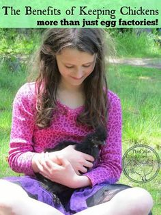 The Benefits of Keeping Chickens Backyard Poultry, Backyard Farming, Chickens Backyard, Chicken Feed, Chicken Eggs, Chicken Coops, City Chicken, Small Chicken, Chicken Lady