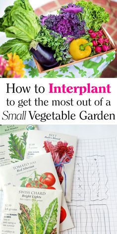 Southern Mom Loves: How to Interplant to Get the Most out of a Small Vegetable Garden