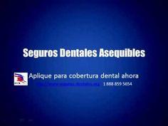 Necesita Seguro Dental