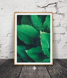 I N S T A N T - D O W N L O A D - 1-5-3  Hallo, sind wir Lila und Lola, Schöpfer der druckbare Wandkunst. Inspiriert von aktuellen Einrichtungstrends und unser Haus in den Bergen, unsere Arbeit ist modern mit einer erdigen Note.  Druckbare Kunst ist die einfache und kostengünstige Möglichkeit, Ihr Haus oder Büro zu personalisieren. Sie können zu Hause, an Ihrem lokalen Druckerei drucken oder laden Sie die Dateien auf einer Online-Druckerei und haben Ihre Ausdrucke geliefert an Ihre Tür…