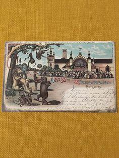 Ostpreußen, Gruß aus Königsberg, Thiergarten 1900  | eBay