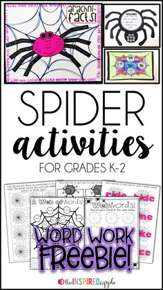 Spider Activities for Primary Students - The Inspired Apple