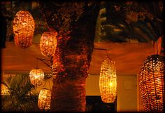 Basket lights on the courtyard where I took the Christmas tree photo. I thought they looked cool. Basket Lighting, Patio Lighting, Company Picnic, Tiffany Lamps, Weaving Art, Photo Tree, Garden Structures, Jar Gifts, Pool Landscaping