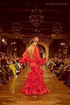 MARÍA JOSÉ COLLANTES ® Moda flamenca, fiesta y complementos   Colección 2015 – Pura Magia