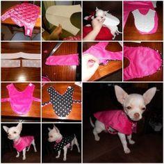 DIY Cute Reversible Dog Coat 1
