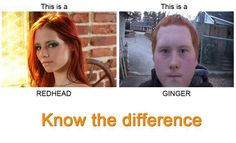 Redhead vs Ginger -  this is so mean, but funny XD