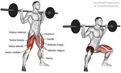 Barbell sumo squat. A compound lower-body exercise. Target muscles: Quadriceps (Rectus Femoris, Vastus Lateralis, Vastus Medialis, and Vastus Intermedius). Synergistic muscles: Gluteus Maximus, Pectineus, Adductor Magnus, Adductor Longus, Adductor Brevis, Gracilis, and Soleus. Dynamic stabilizers: Hamstrings. Visit site to learn proper form.