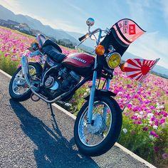 Sunrise, Motorcycle, Vehicles, Motorcycles, Car, Sunrises, Motorbikes, Choppers, Vehicle