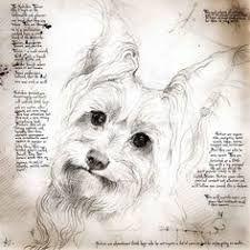 Image result for leonardo da vinci drawings of animals