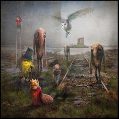 'Sinking Castle' / Scotland www.matyldakonecka.com