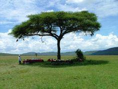 Campement, #Serengeti