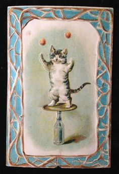 Antique Lion Coffee Juggling Circus Tumbler Cat Trade Card,Toledo,OH Trading Card Sleeves, Lion Coffee, Cat Drawing, Pose Reference, Vintage Cards, Cat Art, Cats And Kittens, The Past, Toledo Ohio
