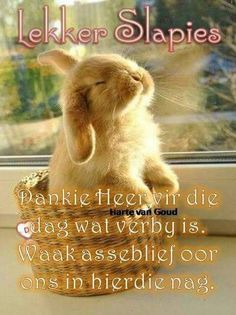 Good Night Blessings, Good Night Wishes, Good Night Sweet Dreams, Evening Quotes, Night Quotes, Afrikaanse Quotes, Goeie Nag, Goeie More, Christian Messages