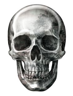 """Texture Skull"" for t-shirt design by Eddie Yau 