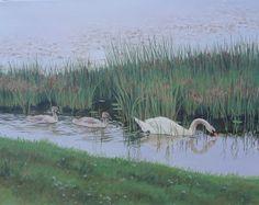 salt marsh painting coastal NH trumpet swan birds serene nautical Paintings by Christine Blain : Portfolio