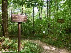 Discusses hiking the short loop trail in Wildcat Hollow located in the Athens Unit of Wayne National Forest near Glouster, Ohio and Burr Oak State Park. Ohio Hiking, Camping And Hiking, Athens Ohio, National Forest, State Parks, Things To Do, Trail, The Unit, Adventure