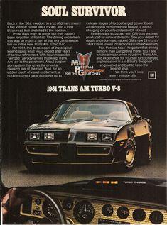 1981 Pontiac Trans Am Turbo V~8