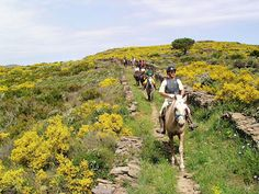 ****Pyrennean Mountain Trail**** (Spain) 50€ discount for the June 19-25 tour! <3 7 days / 6 nights, rate from $1,490 Find out more at: http://www.hiddentrails.com/t…/spain_catalonia_pyrenean.aspx
