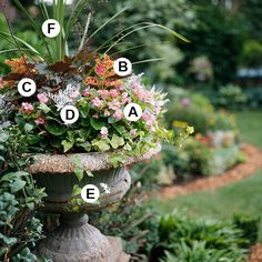 recipe for a container garden