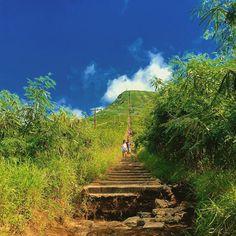 Koko Head vandringsled. Inte så lång men rätt uppåt i 1048 trappsteg. En gammal tågräls som användes av militärtåg, då det är en militärbas på toppen. Koko Head Trail, Hawaii Travel, Oahu, Beautiful Day, Vineyard, Hiking, Challenges, Island, Instagram Posts