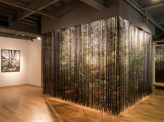 """""""Lenticular Curtain"""", Breathtaking: Constructed Landscapes, Harbourfront Architecture Gallery, Toronto, 28 September – 31 December 2012"""