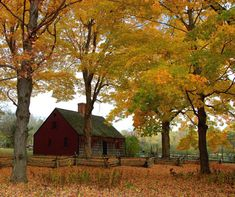 old barn in fall, would look real nice if it was finished in this dark red color
