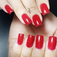 Vermelho intenso! #manicure #manicuregel #manicurenails #nailartist #nailartistniteroi #esmalte #esmalteria #cintiagomesnailartist #unhas #unhasdasemana #unhasdecoradas #unhasdegel #unhasnaturais #unhasartisticas #unhasniteroi #unhasrj #dicasdeunhasbr #unhasbr #unhasbrasil #unhasfemininas #bloggernails #nailart #naildesigner #blogueirabrasil #unhaslindas #instanails #instadeunhas #niteroi #alongamentodeunhas #unhasperfeitas