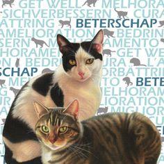 Beterschap kaart met katten en tekst ´Beterschap´- Greetz