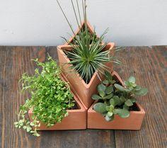 Triangle terra cotta planters by beetle & flor