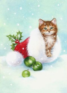 Lisa Alderson - LA - christmas kitten 3.jpg