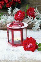 Rote Laterne mit Teelicht und Rosenblüte auf Kunstschnee