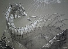 Managed to slip the whale theme in. Inktober - The Deep Mythical Sea Creatures, Fairytale Creatures, Mythological Creatures, Fantasy Creatures, Realistic Dragon Drawing, Lake Monsters, Dragon Sketch, Cool Dragons, Dragon Artwork