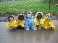 friends in bad weather stick together <3