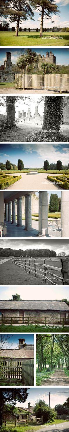 The Castlemartyr Resort Cork Wedding, Wedding Day, Beautiful Wedding Venues, Wedding Locations, Storytelling, Castle, Wedding Photography, Adventure, Photos