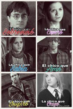 Albus Severus Potter, Harry Potter Hermione Granger, Harry Potter Tumblr, Harry Potter Books, Harry Potter Fan Art, Harry Potter Universal, Harry Potter Memes, Harry Porter, Triste Disney