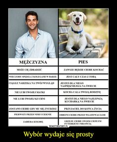 Man vs Dog - choice is simple: O choose dog cuz it is loyal and thinks that I am beautiful *w* Wtf Funny, Funny Memes, Jokes, Weekend Humor, Reaction Pictures, I Love Dogs, Laugh Out Loud, Funny Photos, True Stories