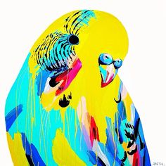 Anya Brock Budgie. Bright, bold, beautiful and colourful paintings...