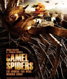 CAMEL SPIDERS :  http://thelatestmovie4u.co.cc/