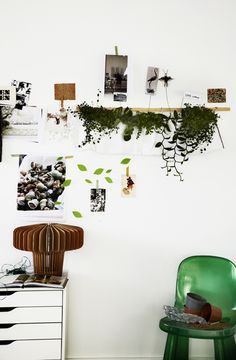 nature green room