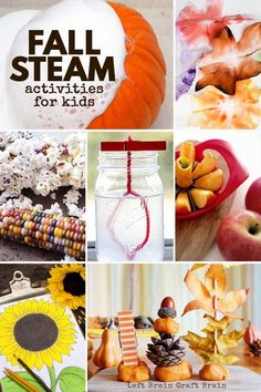 The air is getting cooler & the leaves are changing. It's fall science happening around you! This set of Fall STEAM activities are perfect for your kids. Harvest Activities, Autumn Activities For Kids, Fall Preschool, Steam Activities, Fall Crafts For Kids, Kids Learning Activities, Preschool Ideas, Space Activities, Stem Learning