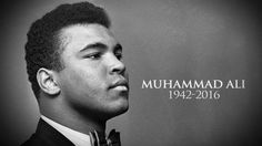 Muhammad Ali has passed away at the age of Here's a look at how various celebrities have mourned the iconic athlete. Mohamed Ali, Float Like A Butterfly, Boxing Champions, Hometown Heroes, Hollywood Gossip, Thanks For The Memories, Sport Icon, Its A Mans World, Famous Men