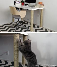 Ideas for cats diy scratching post ikea hacks Ikea Hacks, Desk Hacks, Diy Furniture Plans, Cat Furniture, Painted Furniture, Rambo 3, Ikea Legs, New Swedish Design, Desk Legs