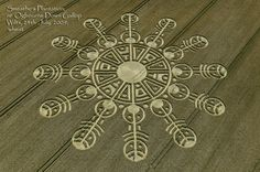 Crop Circles ~ wheat ~ Southern England