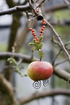 Apple and rowan berry bird feeder...a present for the birds at Yule