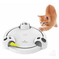 The Frolicat Pounce is an automatic, rotating, hide-and-seek cat toy. Marshal Maus is an electronic mouse zips around a circular path of unpredictable movement that stimulates your cat's natural instinct to hunt, chase, and pounce prey. Best Interactive Cat Toys, Cat Mouse, Cat Accessories, Cat Supplies, Cat Scratching, Cool Cats, Pet Toys, Catnip Toys, Fur Babies