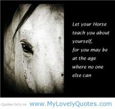 horse pictures with inspirational sayings | Lets your horse teach you about yourself - horse teaching quotes - My ...