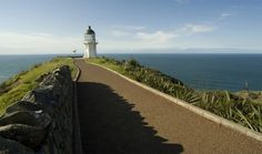 far north nz -cape reinga New Zealand, Places Ive Been, Cape, New Homes, Country Roads, Beach, Travel, Outdoor, Fishing