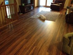Builddirect Laminate 12mm Exotic Wide Plank Collection Balinese Rosewood Living Room View