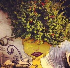 Street art - Olinda/Brasil